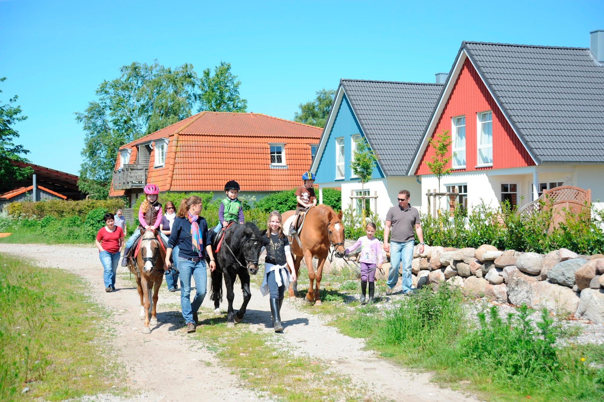 Ferienwohnung Bauernhof Köhlbrandt - Terrassenwohnung (763919), Todendorf, Fehmarn, Schleswig-Holstein, Deutschland, Bild 10