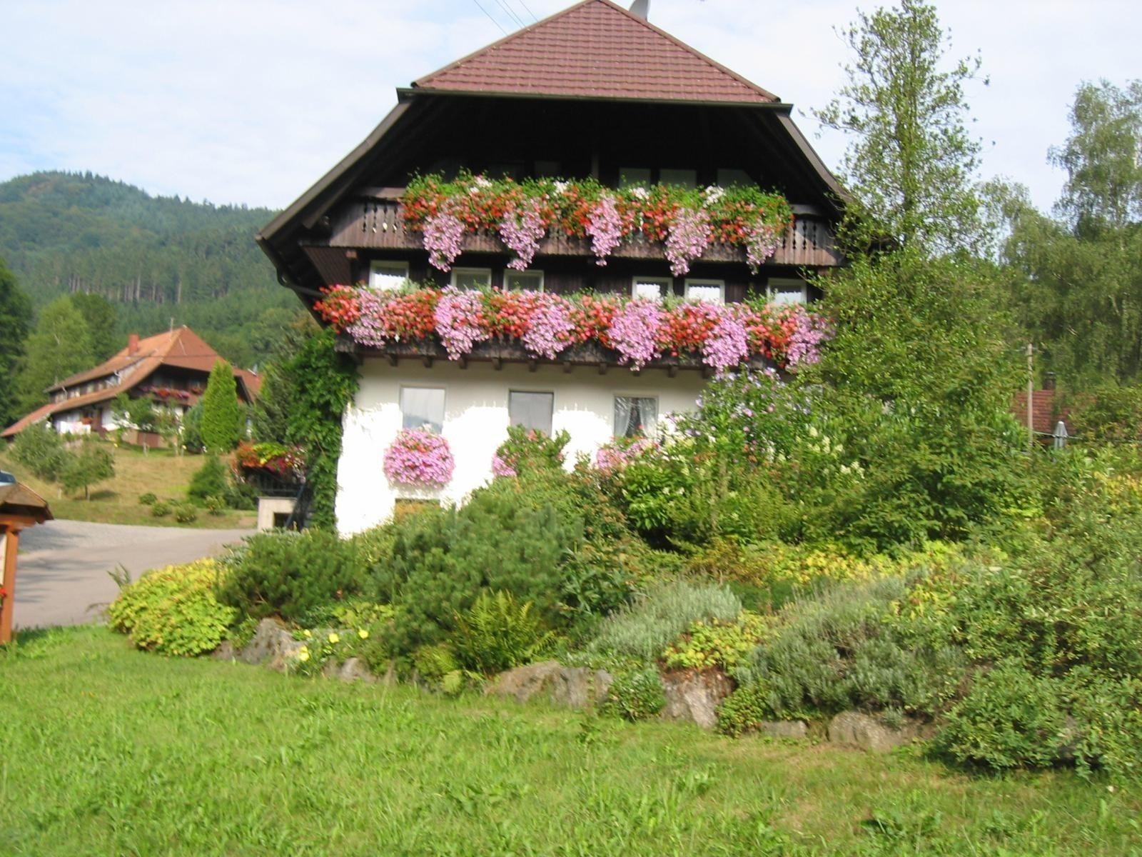 Haus Schneider, Ferienwohnung Talblick