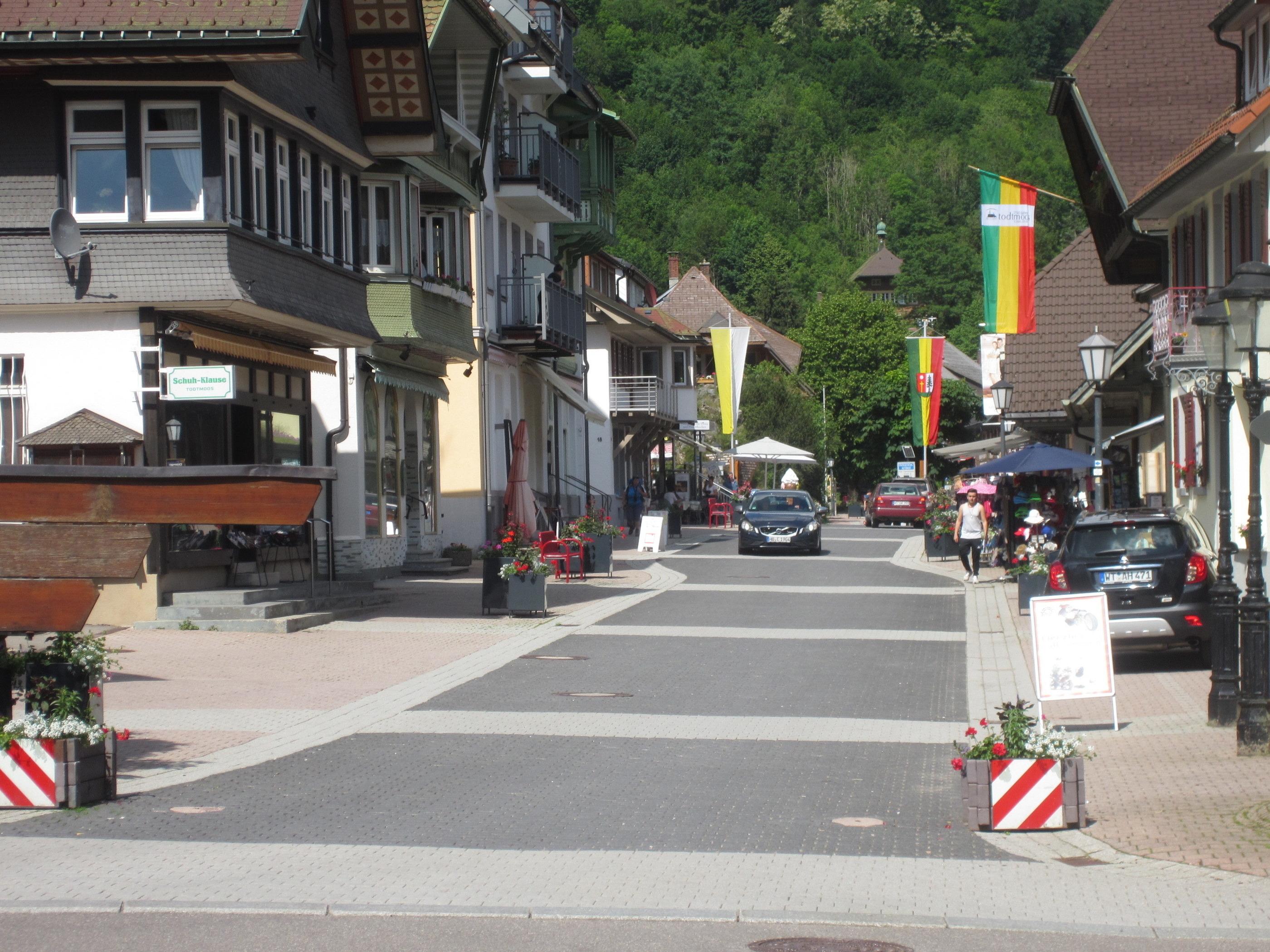 Ferienwohnung Todtmoos (1891564), Todtmoos, Schwarzwald, Baden-Württemberg, Deutschland, Bild 19