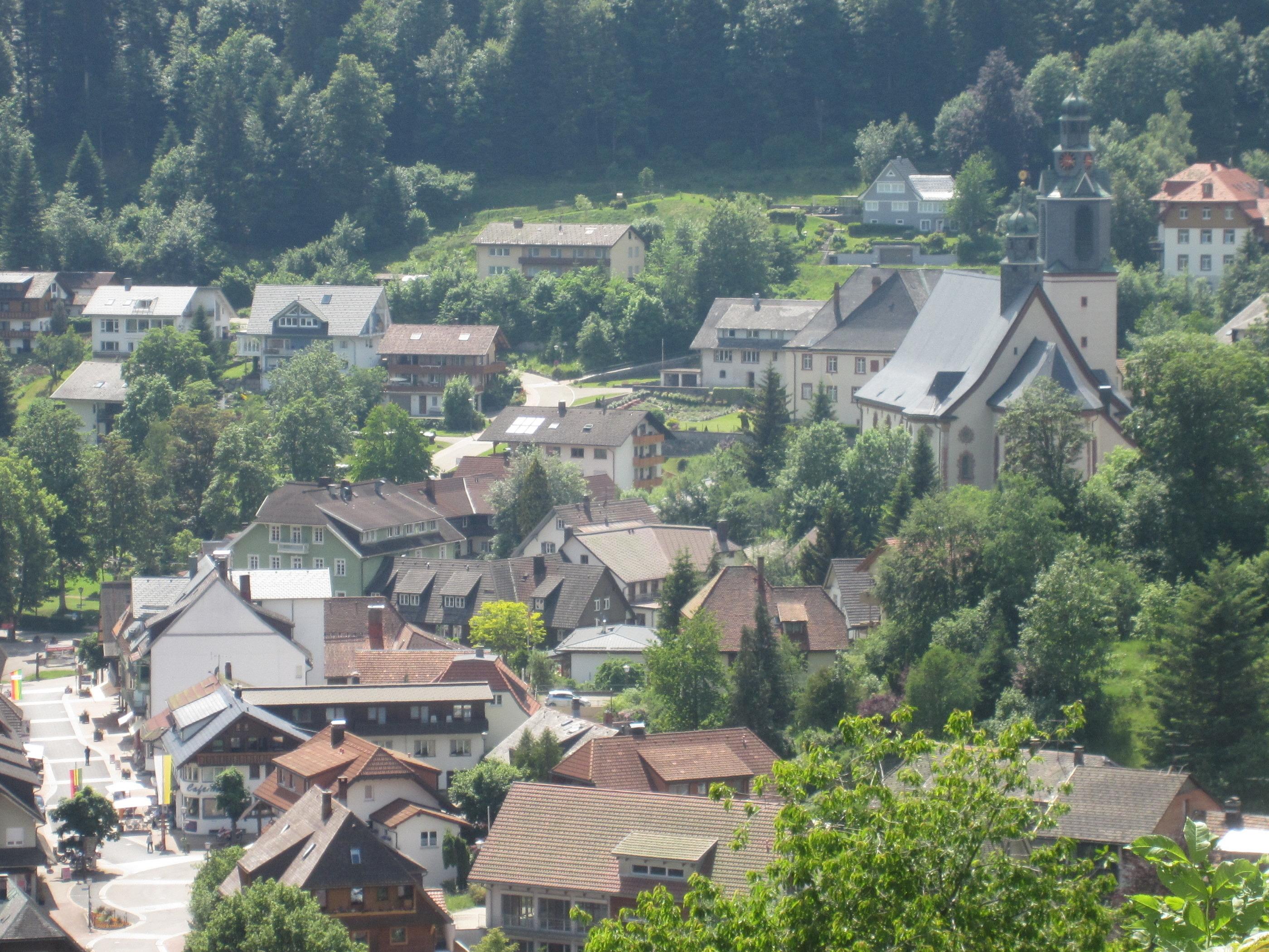 Ferienwohnung Todtmoos (1891564), Todtmoos, Schwarzwald, Baden-Württemberg, Deutschland, Bild 23