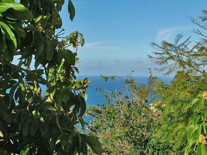 Appartement de vacances Apartment mit Meerblick - F0105 (2240139), El Sauzal, Ténérife, Iles Canaries, Espagne, image 15