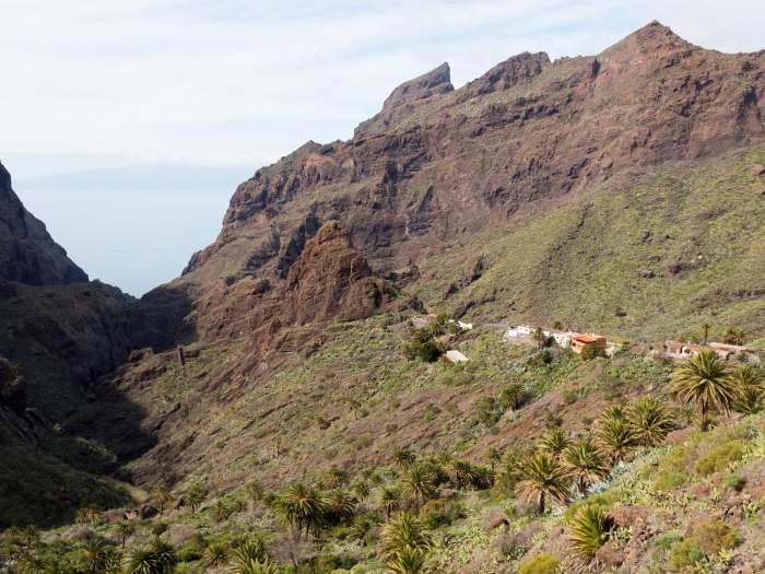 Maison de vacances im Dorf Masca - F7110 (2455925), Masca, Ténérife, Iles Canaries, Espagne, image 21