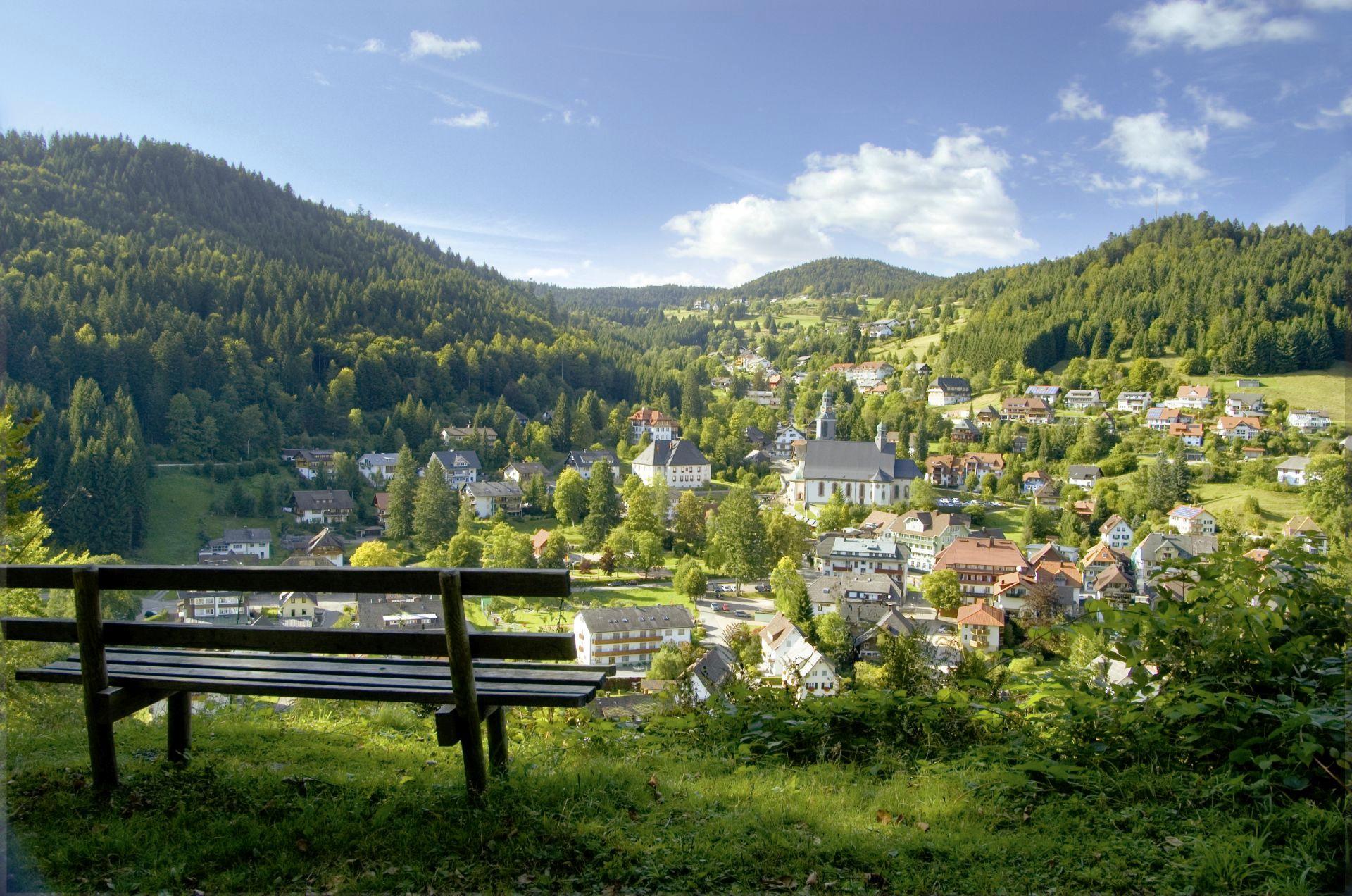 Ferienwohnung Kupferkanne - Fewo Wand  Nr 21 - Todtmoos, Liftverbund Feldberg (2641734), Todtmoos, Schwarzwald, Baden-Württemberg, Deutschland, Bild 19
