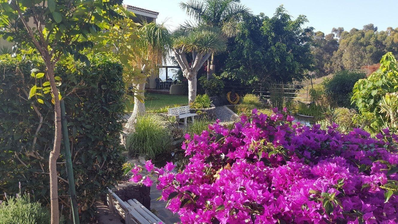 Appartement de vacances Fewo Vistamar mit Meerblick, Pool, grosser Terrasse und Garten, Grill, Parkplatz und WLAN  (2492978), Santa Ursula, Ténérife, Iles Canaries, Espagne, image 21