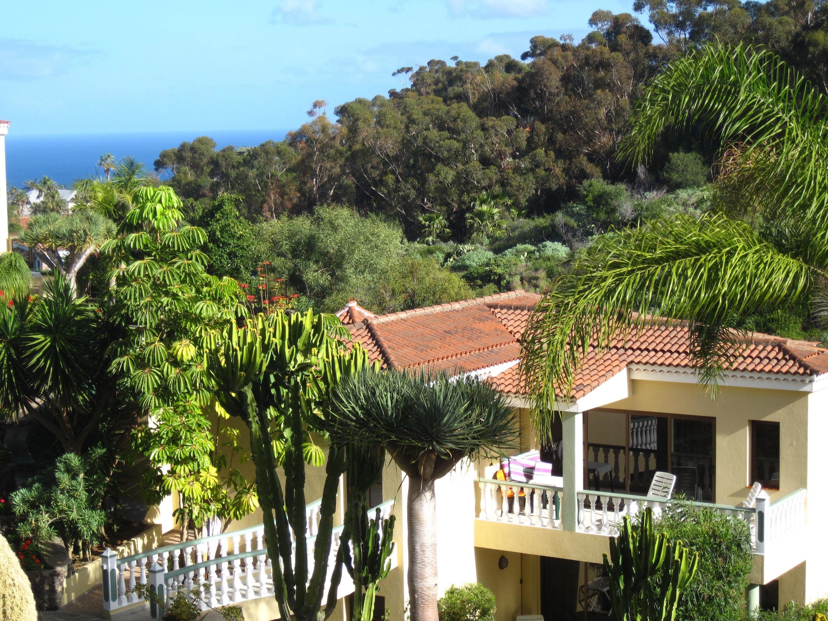 Appartement de vacances Fewo Atico Florasol, sehr ruhig direkt am Naturschutzgebiet, mit Pool, 2 Terrassen, Grill, (2492983), Santa Ursula, Ténérife, Iles Canaries, Espagne, image 15