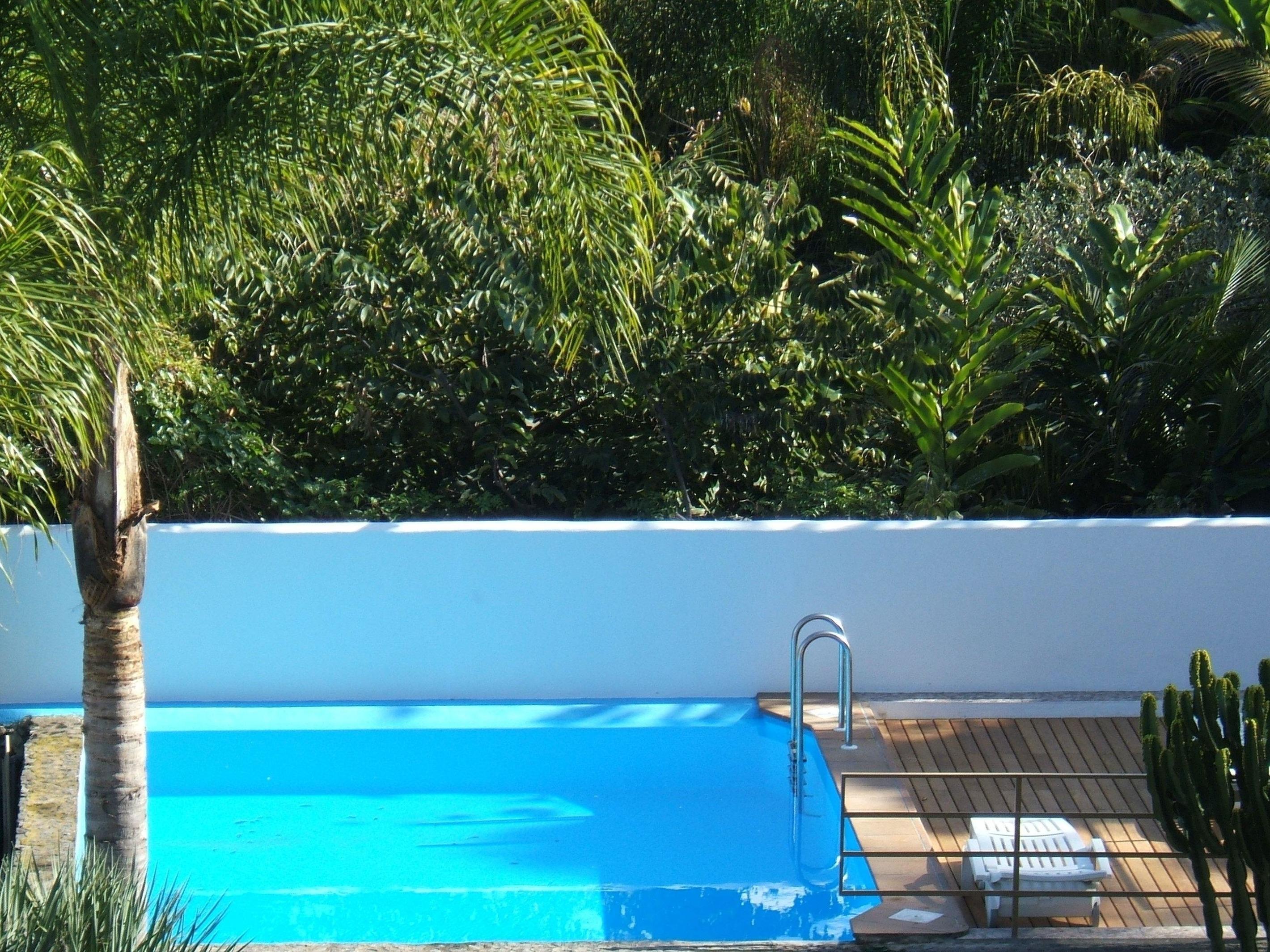 Appartement de vacances Fewo Strelitzia, im Grünen, am kleinen See, direkt am Strelitziengarten, mit Pool, Grill,  (2492987), Santa Ursula, Ténérife, Iles Canaries, Espagne, image 22