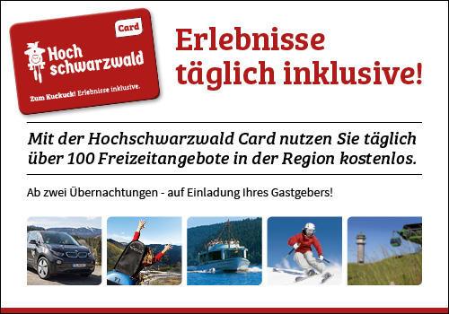 Ferienwohnung Fewo 20 - Residenz Schauinsland- mit SchwimmbadTodtnauberg bei Feldberg (2641795), Todtnau, Schwarzwald, Baden-Württemberg, Deutschland, Bild 11