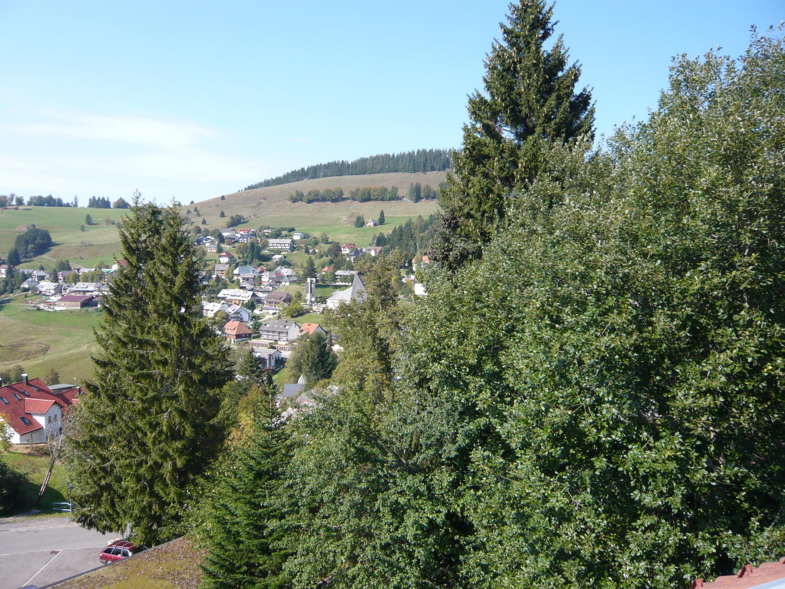Ferienwohnung Fewo 20 - Residenz Schauinsland- mit SchwimmbadTodtnauberg bei Feldberg (2641795), Todtnau, Schwarzwald, Baden-Württemberg, Deutschland, Bild 9