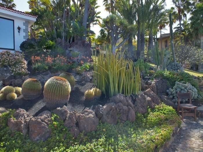 Maison de vacances mit Pool & Terrasse - F7641 (2606546), El Sauzal, Ténérife, Iles Canaries, Espagne, image 22