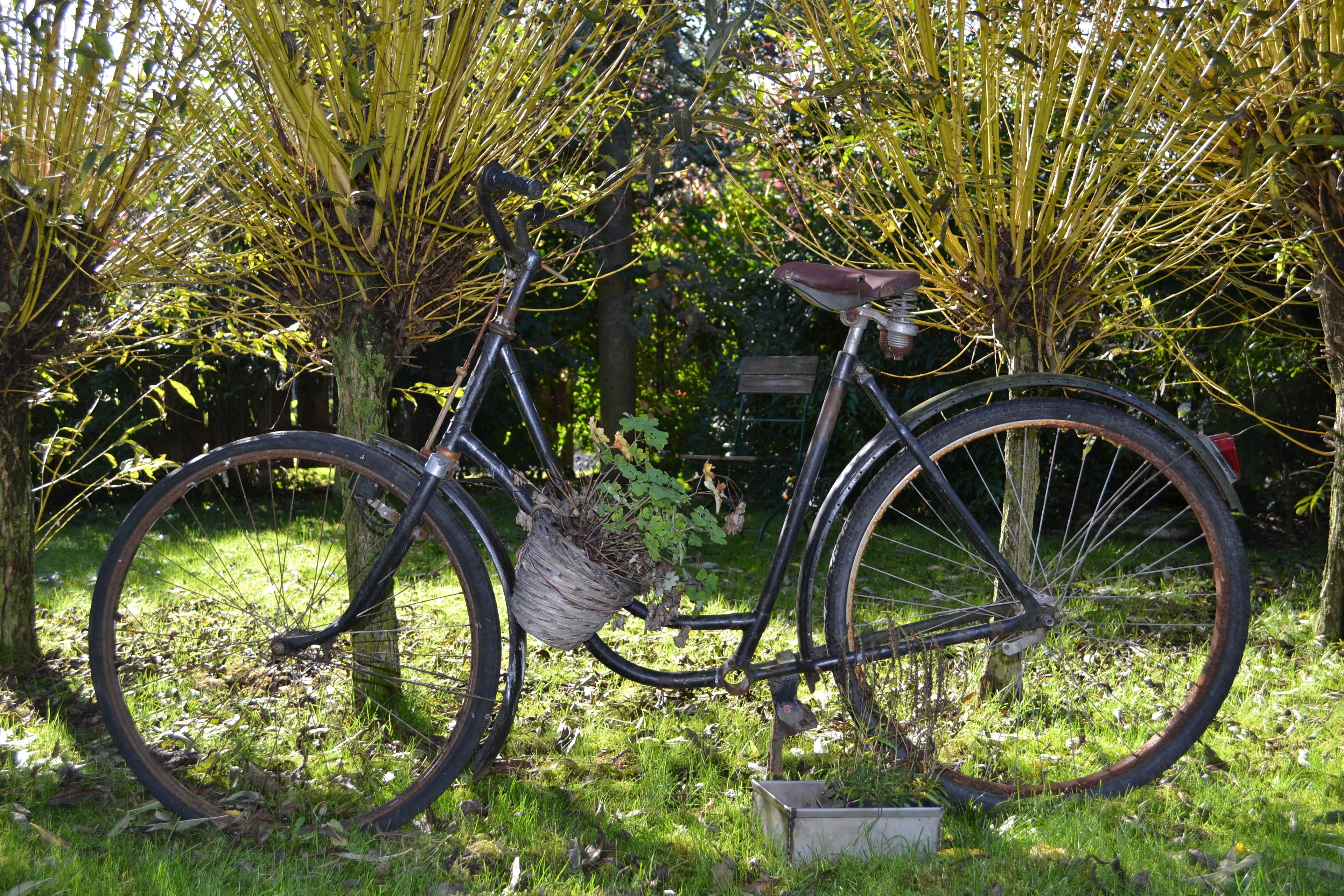 Ferienhaus Gartenvilla unten (2655541), Lutzhorn, Schleswig-Holstein Binnenland, Schleswig-Holstein, Deutschland, Bild 18