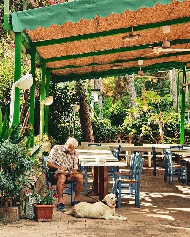 Ferienhaus 4 Personen Bungalow (2713407), Licinella, Salerno, Kampanien, Italien, Bild 12