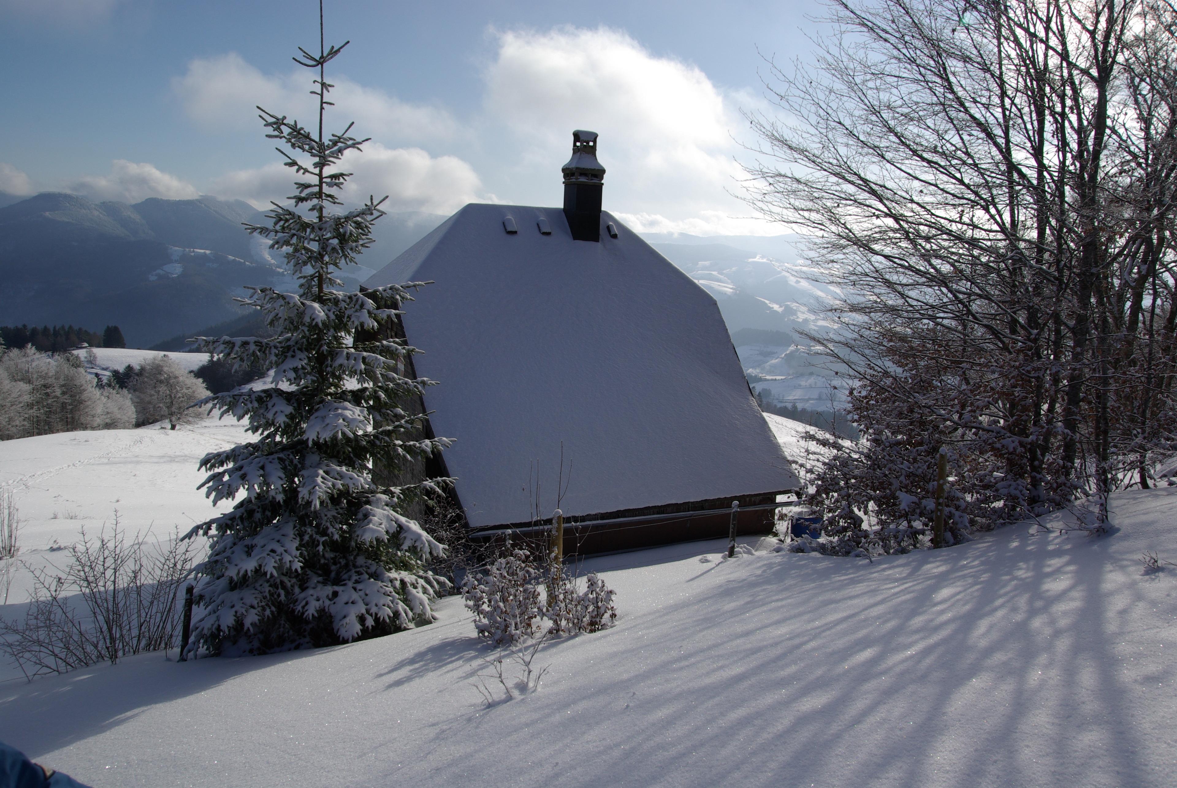 Ferienwohnung Haus Föhrenbach (2793873), Schönenberg, Schwarzwald, Baden-Württemberg, Deutschland, Bild 18
