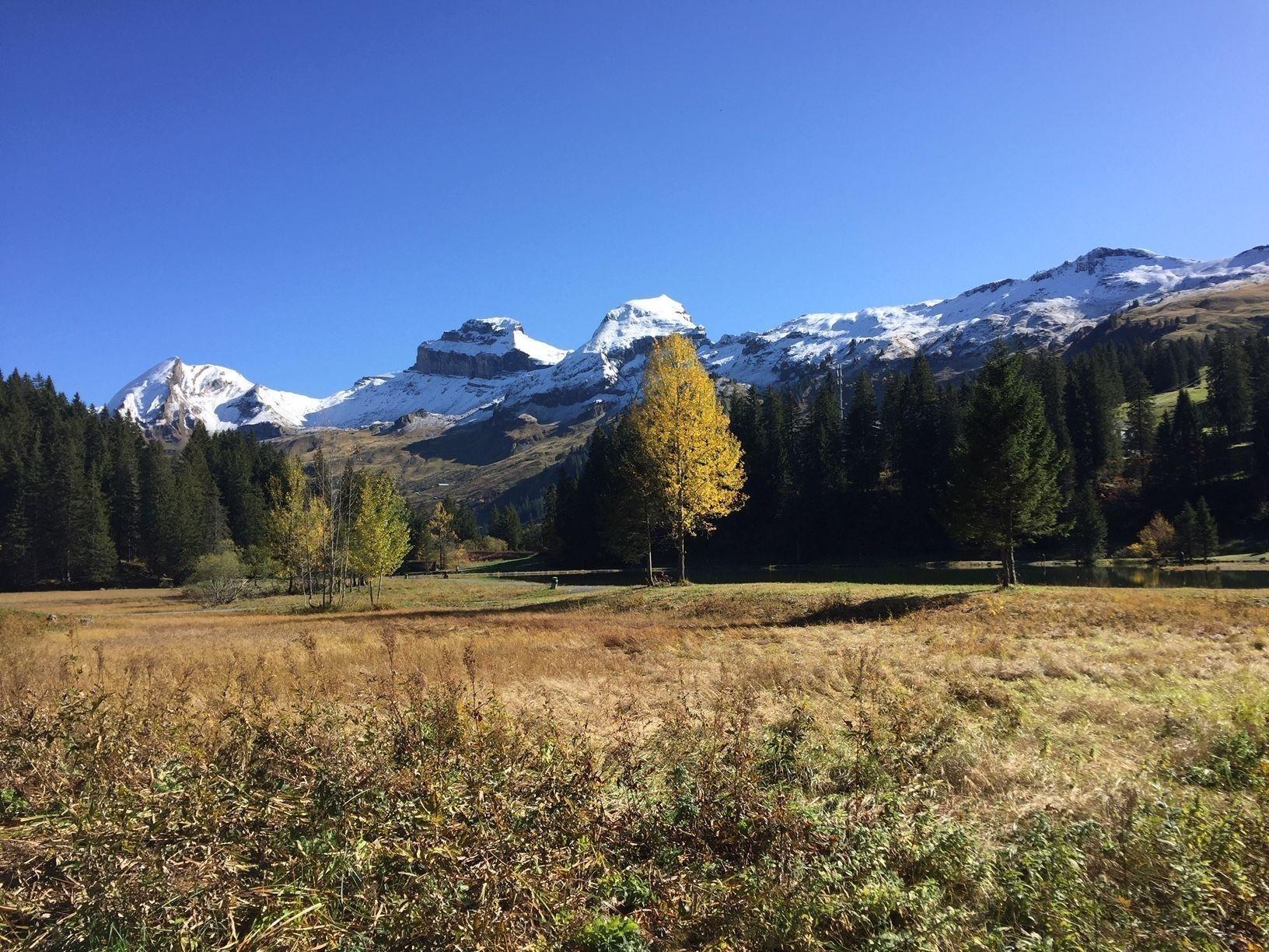 Ferienwohnung Hoch Ybrig (2798110), Oberiberg, Schwyz, Zentralschweiz, Schweiz, Bild 21